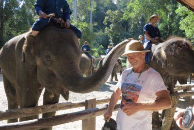 MAE SA ELEPHANT SHOWS