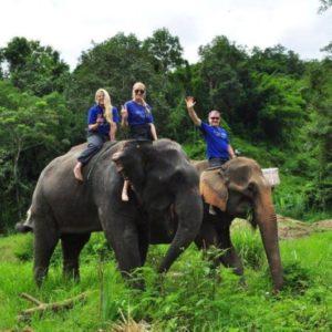 BAAN CHANG ELEPHANT PARADISE