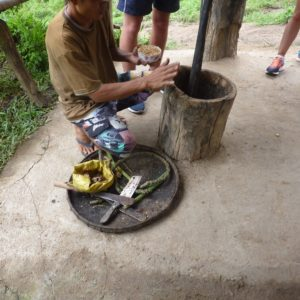3 DAYS CHIANG MAI ELEPHANT SANCTUARY & TREKKING
